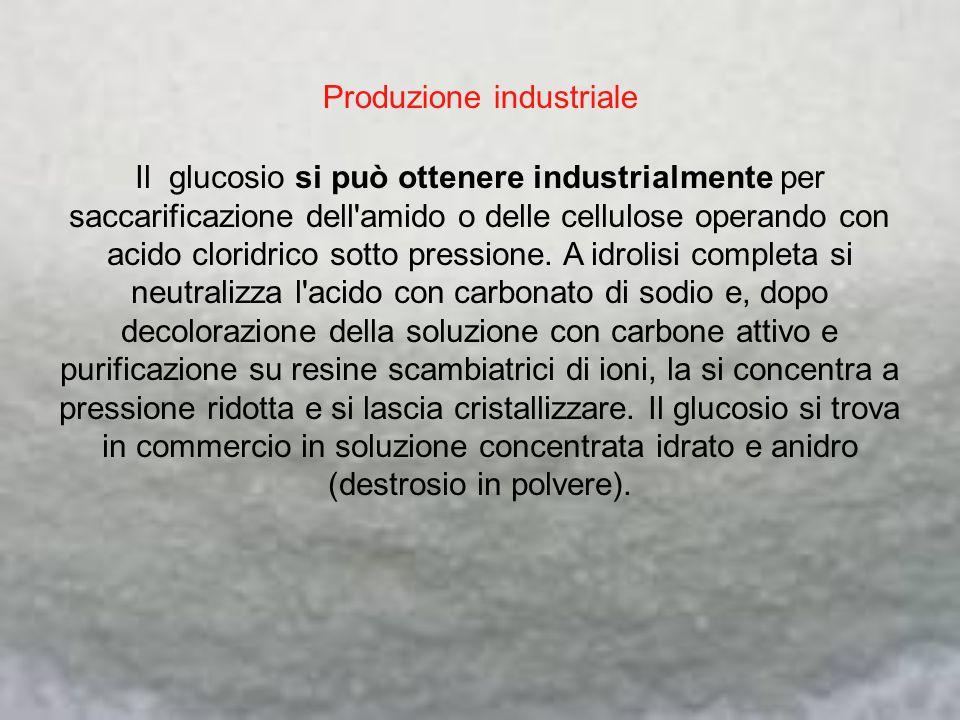 Produzione industriale Il glucosio si può ottenere industrialmente per saccarificazione dell'amido o delle cellulose operando con acido cloridrico sot