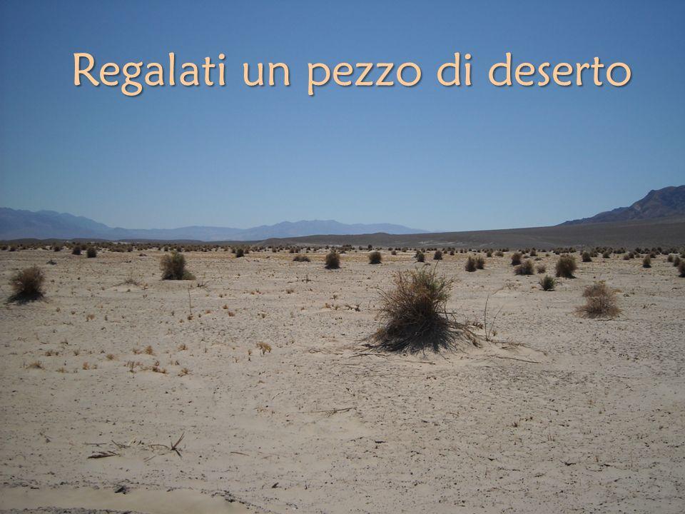 Regalati un pezzo di deserto