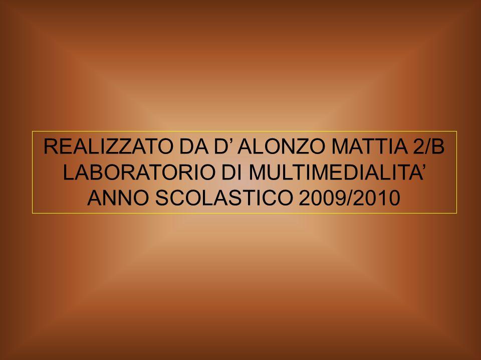 REALIZZATO DA D ALONZO MATTIA 2/B LABORATORIO DI MULTIMEDIALITA ANNO SCOLASTICO 2009/2010