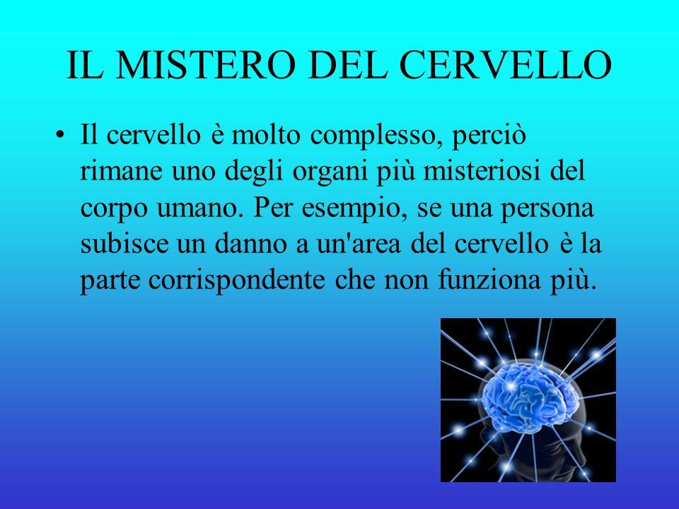 IL MISTERO DEL CERVELLO Il cervello è molto complesso, perciò rimane uno degli organi più misteriosi del corpo umano.