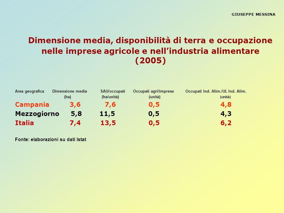 GIUSEPPE MESSINA Dimensione media, disponibilità di terra e occupazione nelle imprese agricole e nellindustria alimentare (2005) Area geografica Dimen