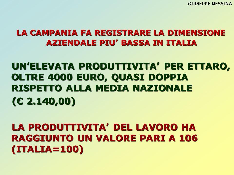 GIUSEPPE MESSINA LA CAMPANIA FA REGISTRARE LA DIMENSIONE AZIENDALE PIU BASSA IN ITALIA UNELEVATA PRODUTTIVITA PER ETTARO, OLTRE 4000 EURO, QUASI DOPPI