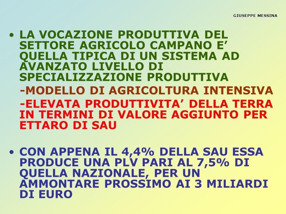 GIUSEPPE MESSINA SUPERFICIE AGRARIA UTILIZZATA (SAU) ETTARI 107.000 (pari al 40,69% della sup.