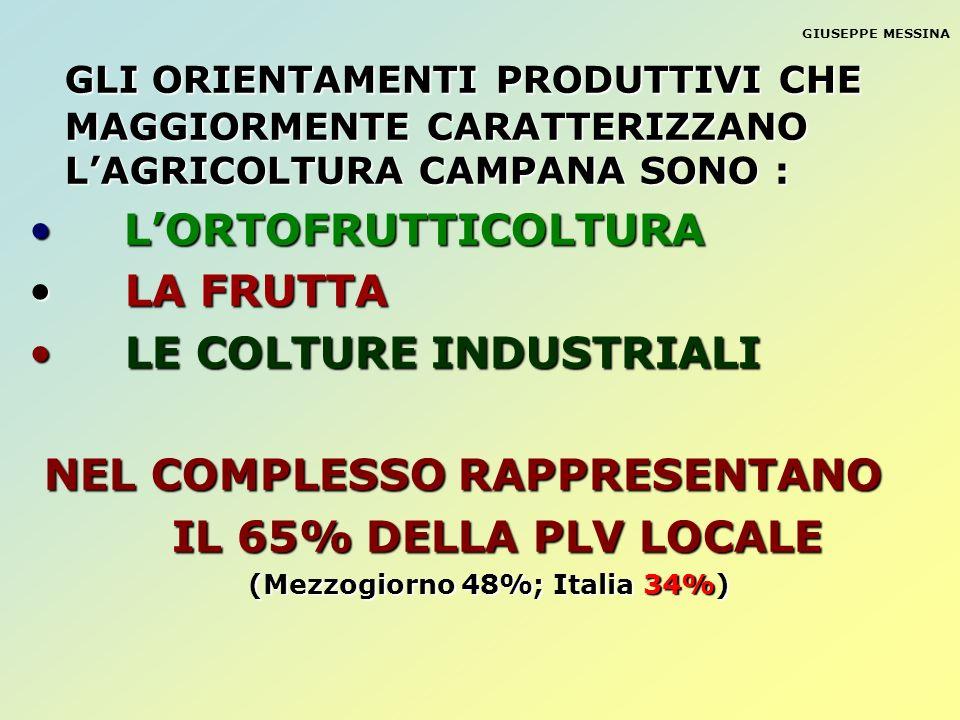 Napoli Benevento Isernia Frosinone LT