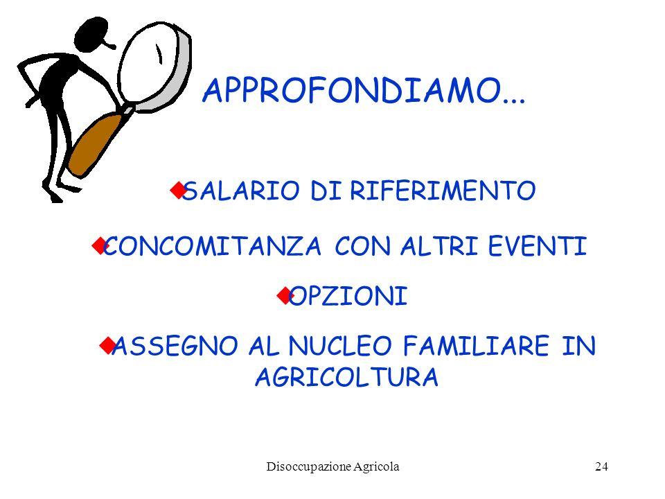 Disoccupazione Agricola24 SALARIO DI RIFERIMENTO APPROFONDIAMO... CONCOMITANZA CON ALTRI EVENTI ASSEGNO AL NUCLEO FAMILIARE IN AGRICOLTURA OPZIONI