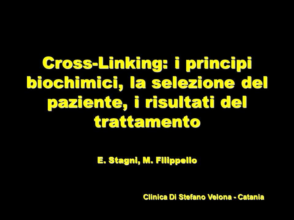 Cross-Linking: i principi biochimici, la selezione del paziente, i risultati del trattamento E. Stagni, M. Filippello Clinica Di Stefano Velona - Cata