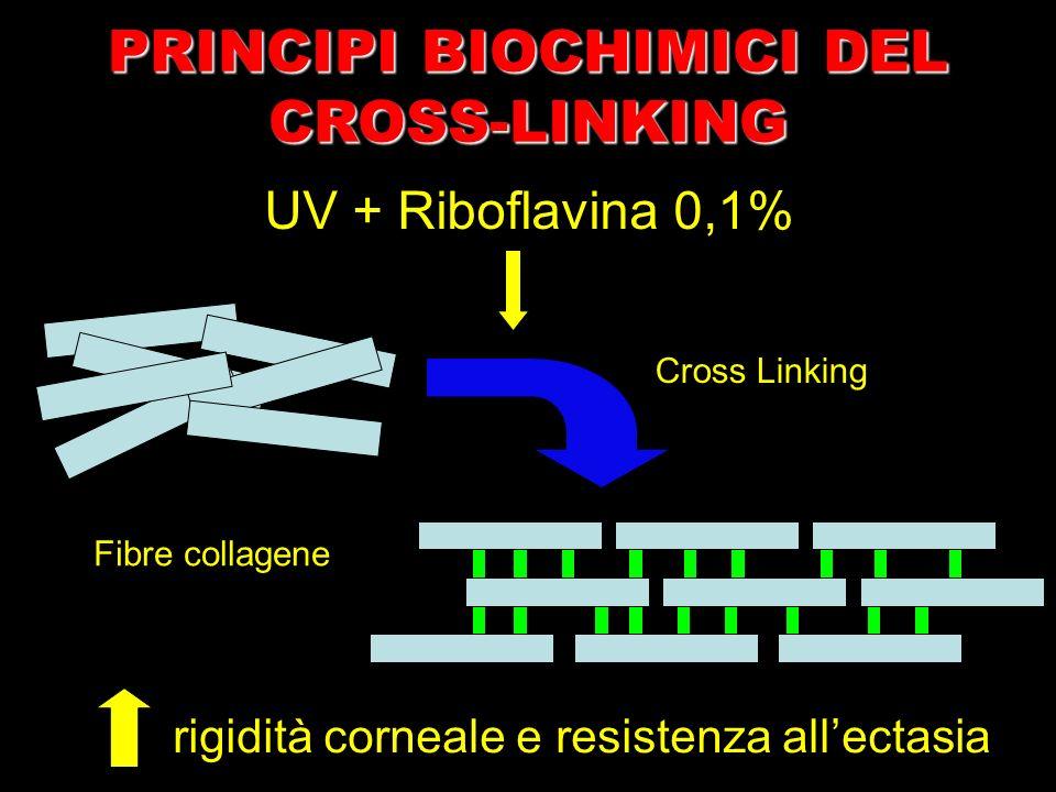 UV + Riboflavina 0,1% Fibre collagene rigidità corneale e resistenza allectasia Cross Linking PRINCIPI BIOCHIMICI DEL CROSS-LINKING