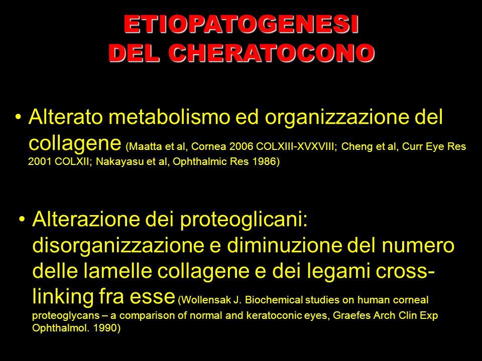 Alterato metabolismo ed organizzazione del collagene (Maatta et al, Cornea 2006 COLXIII-XVXVIII; Cheng et al, Curr Eye Res 2001 COLXII; Nakayasu et al