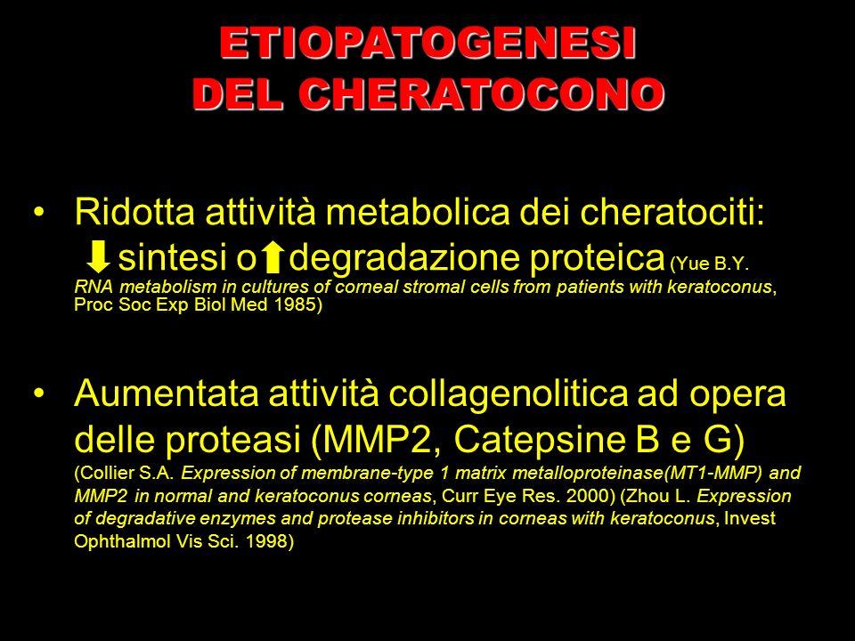 Ridotta attività metabolica dei cheratociti: sintesi o degradazione proteica (Yue B.Y. RNA metabolism in cultures of corneal stromal cells from patien