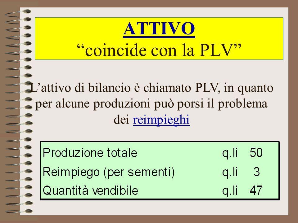 ATTIVO coincide con la PLV Lattivo di bilancio è chiamato PLV, in quanto per alcune produzioni può porsi il problema dei reimpieghi