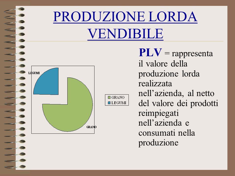 PRODUZIONE LORDA VENDIBILE PLV = rappresenta il valore della produzione lorda realizzata nellazienda, al netto del valore dei prodotti reimpiegati nel