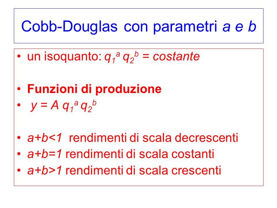 Cobb-Douglas con parametri a e b un isoquanto: q 1 a q 2 b = costante Funzioni di produzione y = A q 1 a q 2 b a+b<1 rendimenti di scala decrescenti a