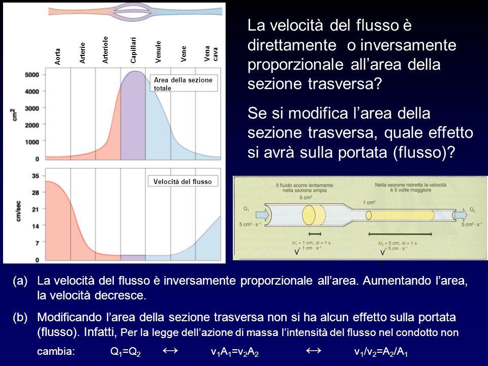 La velocità del flusso è direttamente o inversamente proporzionale allarea della sezione trasversa? Se si modifica larea della sezione trasversa, qual