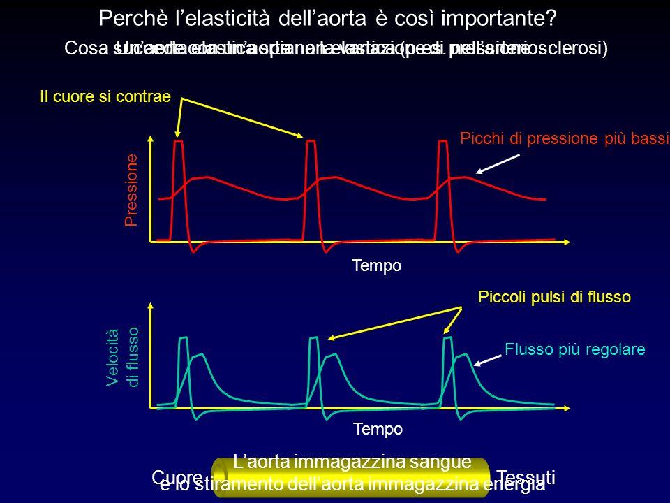 Pressione Tempo Piccoli pulsi di flusso Il cuore si contrae Tempo Velocità di flusso Perchè lelasticità dellaorta è così importante? Cosa succede con