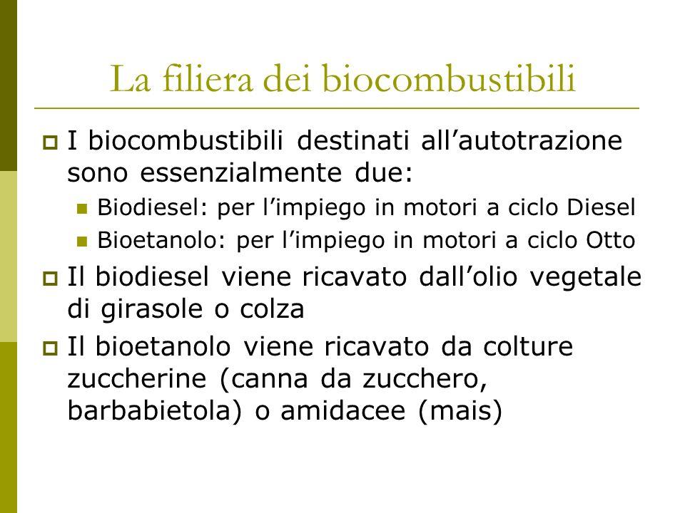La filiera dei biocombustibili I biocombustibili destinati allautotrazione sono essenzialmente due: Biodiesel: per limpiego in motori a ciclo Diesel Bioetanolo: per limpiego in motori a ciclo Otto Il biodiesel viene ricavato dallolio vegetale di girasole o colza Il bioetanolo viene ricavato da colture zuccherine (canna da zucchero, barbabietola) o amidacee (mais)
