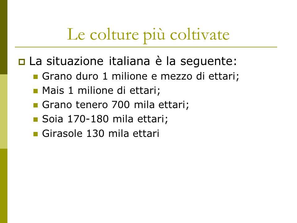 Le colture più coltivate La situazione italiana è la seguente: Grano duro 1 milione e mezzo di ettari; Mais 1 milione di ettari; Grano tenero 700 mila