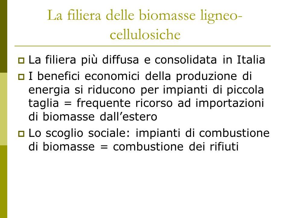 La filiera delle biomasse ligneo- cellulosiche La filiera più diffusa e consolidata in Italia I benefici economici della produzione di energia si riducono per impianti di piccola taglia = frequente ricorso ad importazioni di biomasse dallestero Lo scoglio sociale: impianti di combustione di biomasse = combustione dei rifiuti