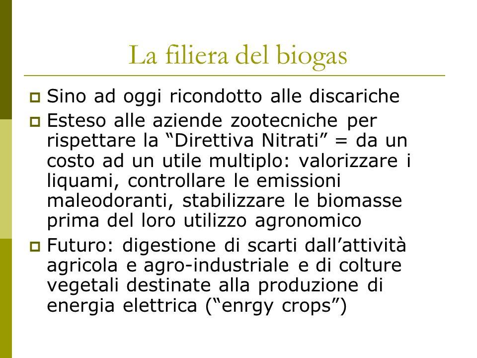 La filiera del biogas Sino ad oggi ricondotto alle discariche Esteso alle aziende zootecniche per rispettare la Direttiva Nitrati = da un costo ad un utile multiplo: valorizzare i liquami, controllare le emissioni maleodoranti, stabilizzare le biomasse prima del loro utilizzo agronomico Futuro: digestione di scarti dallattività agricola e agro-industriale e di colture vegetali destinate alla produzione di energia elettrica (enrgy crops)