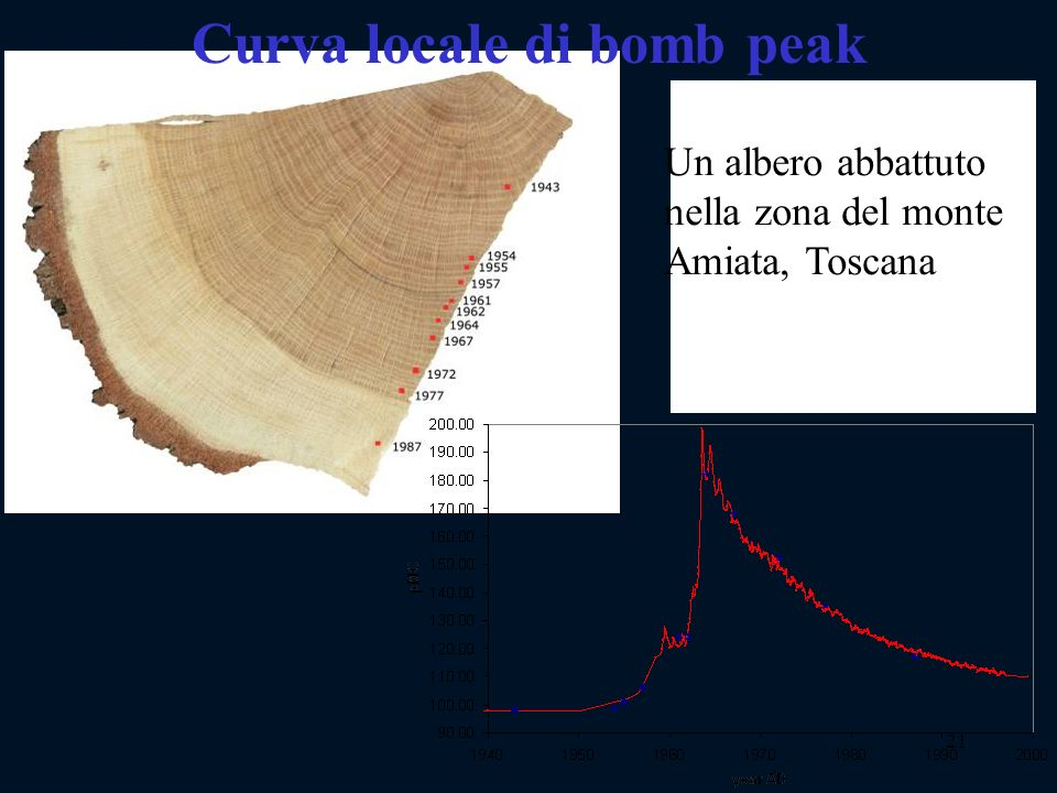 21 Curva locale di bomb peak Un albero abbattuto nella zona del monte Amiata, Toscana