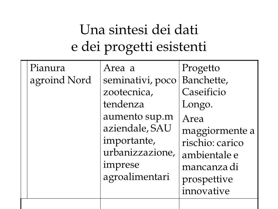 Una sintesi dei dati e dei progetti esistenti Pianura agroind Nord Area a seminativi, poco zootecnica, tendenza aumento sup.m aziendale, SAU important