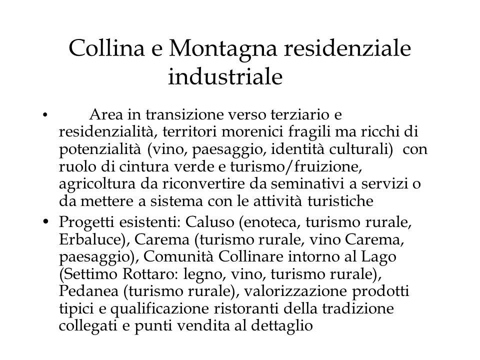 Collina e Montagna residenziale industriale Area in transizione verso terziario e residenzialità, territori morenici fragili ma ricchi di potenzialità