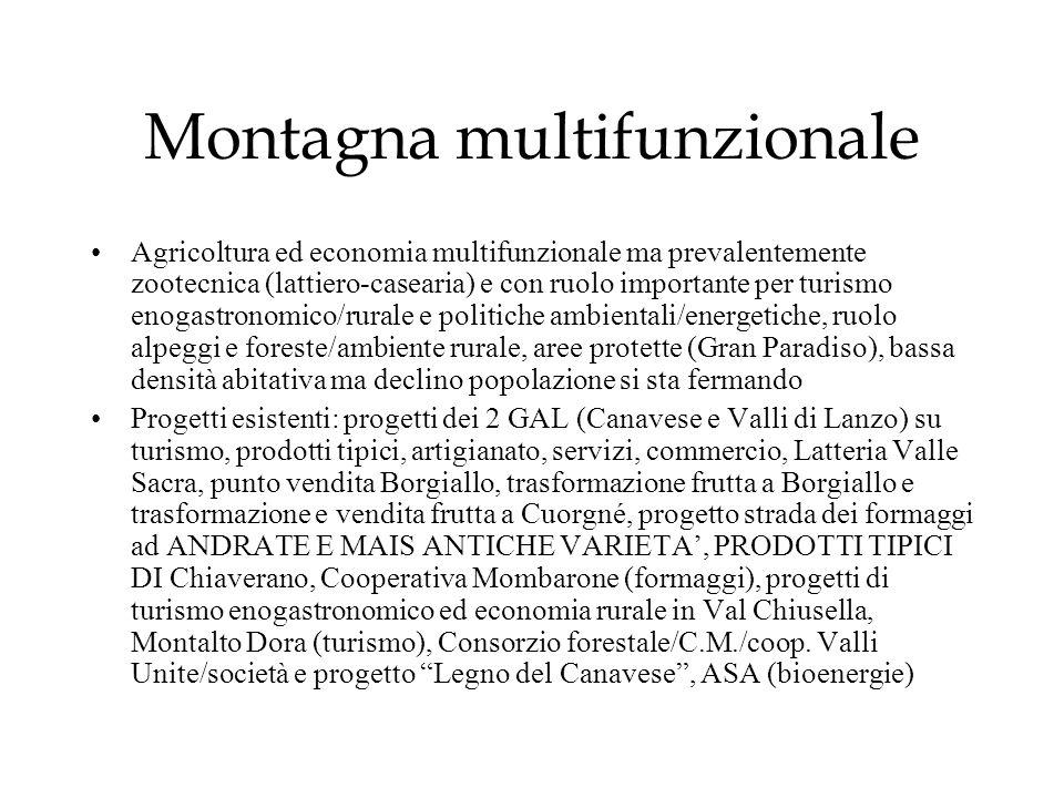 Montagna multifunzionale Agricoltura ed economia multifunzionale ma prevalentemente zootecnica (lattiero-casearia) e con ruolo importante per turismo
