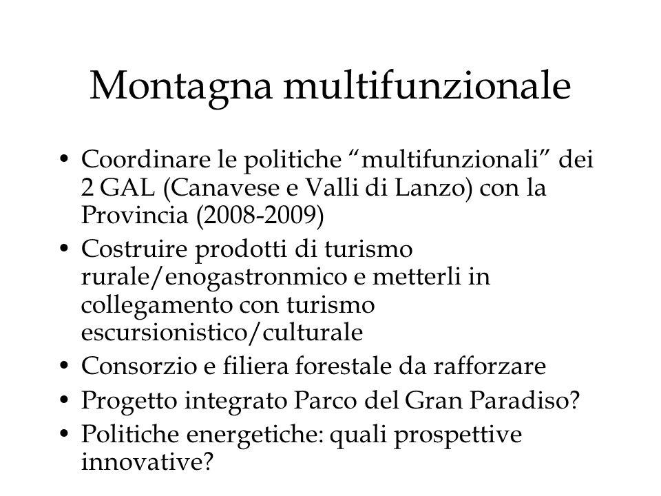 Montagna multifunzionale Coordinare le politiche multifunzionali dei 2 GAL (Canavese e Valli di Lanzo) con la Provincia (2008-2009) Costruire prodotti