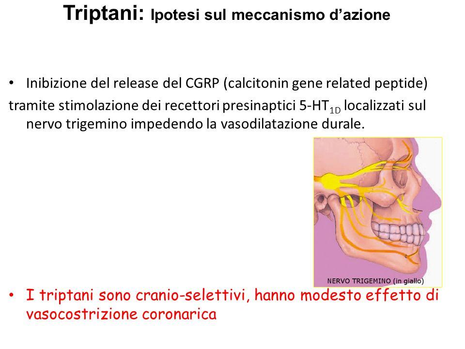 Triptani: Ipotesi sul meccanismo dazione Inibizione del release del CGRP (calcitonin gene related peptide) tramite stimolazione dei recettori presinap