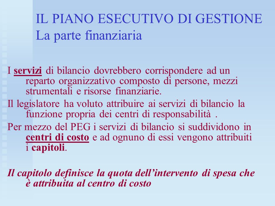 IL PIANO ESECUTIVO DI GESTIONE La parte finanziaria I servizi di bilancio dovrebbero corrispondere ad un reparto organizzativo composto di persone, me
