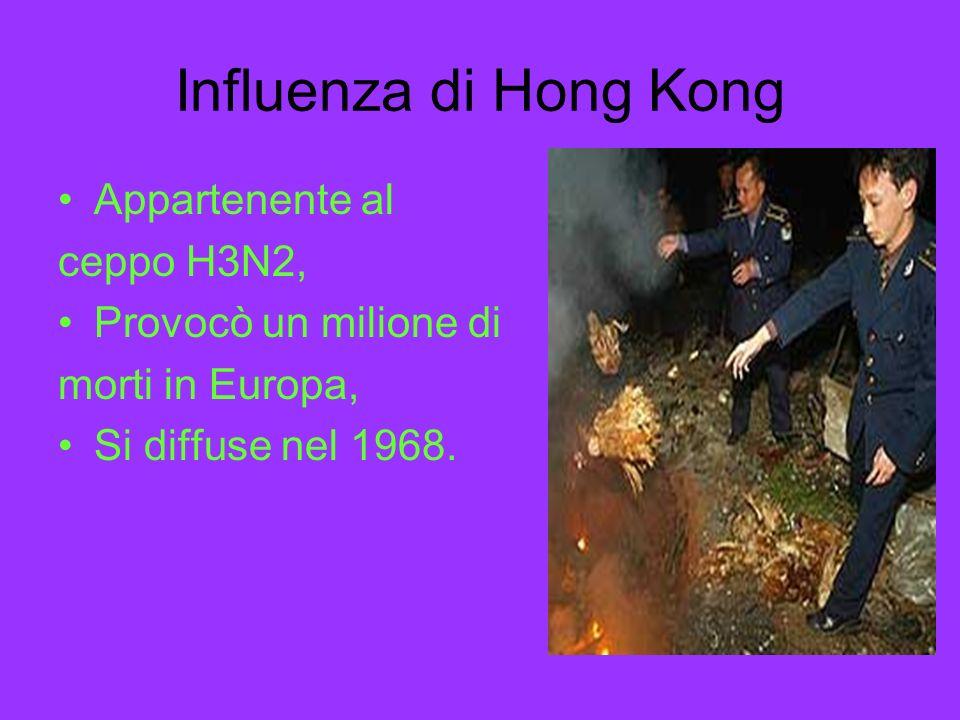 Influenza di Hong Kong Appartenente al ceppo H3N2, Provocò un milione di morti in Europa, Si diffuse nel 1968.