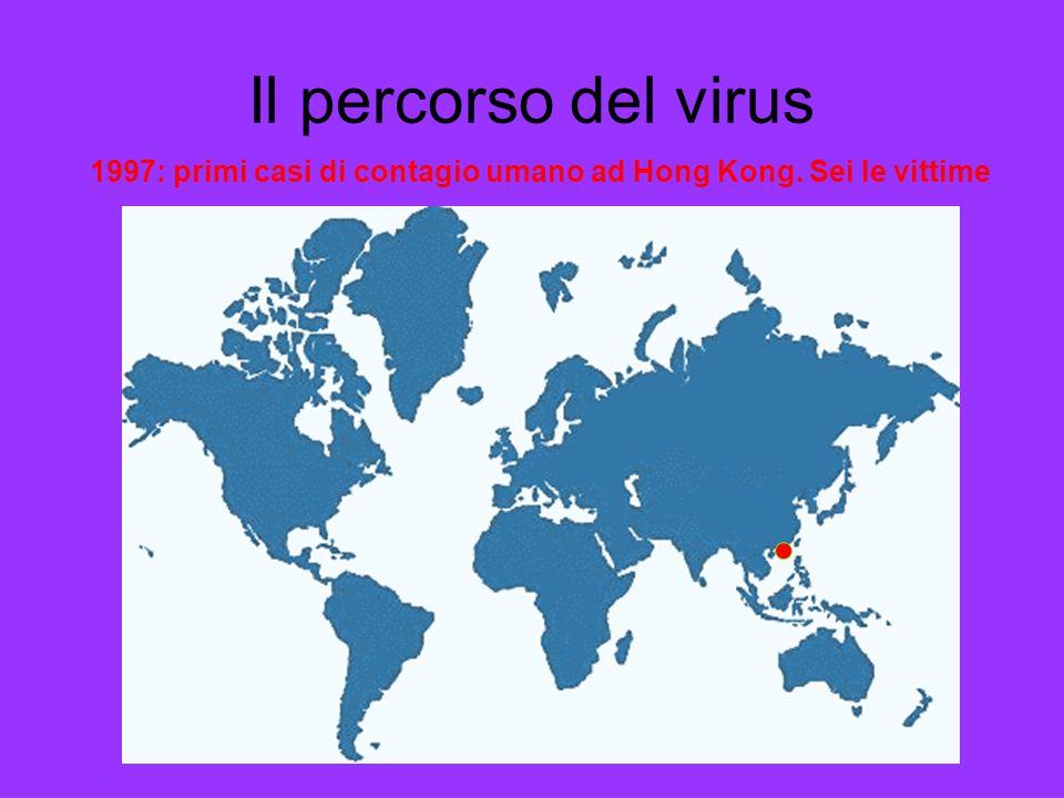 Il percorso del virus 1997: primi casi di contagio umano ad Hong Kong. Sei le vittime