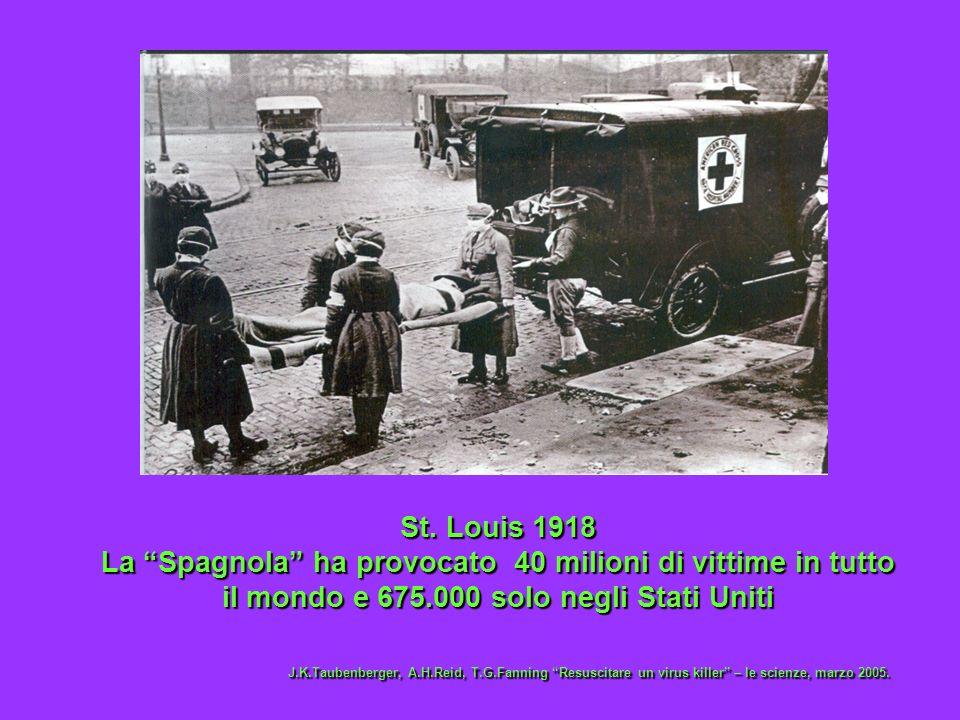 St. Louis 1918 La Spagnola ha provocato 40 milioni di vittime in tutto il mondo e 675.000 solo negli Stati Uniti J.K.Taubenberger, A.H.Reid, T.G.Fanni