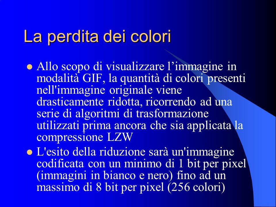La perdita dei colori Allo scopo di visualizzare limmagine in modalità GIF, la quantità di colori presenti nell'immagine originale viene drasticamente