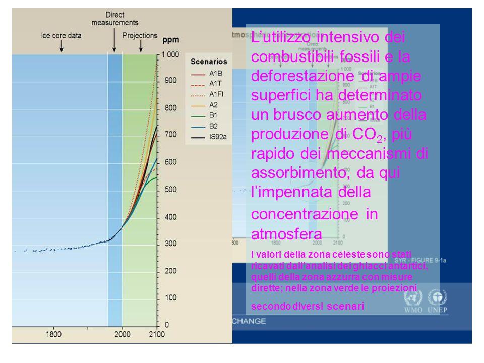 Il ciclo della CO 2 Il gas serra più importante per quantità è la CO 2 che, come si sa, viene prodotto durante le combustioni o i cicli biologici le fonti di emissione naturali e i serbatoi di CO2 (foreste, acque, sedimenti fossili) sono in equilibrio tra di loro per cui la concentrazio ne in atmosfera è rimasta pressoché stabile o con fluttuazioni distribuite su periodi di diversi secoli.