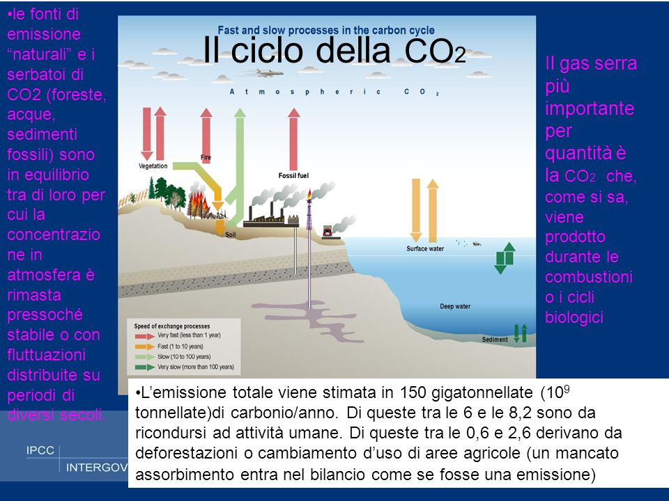 Mutamenti dellatmosfera Fino alla rivoluzione industriale la composizione dellatmosfera è rimasta relativamente stabile.