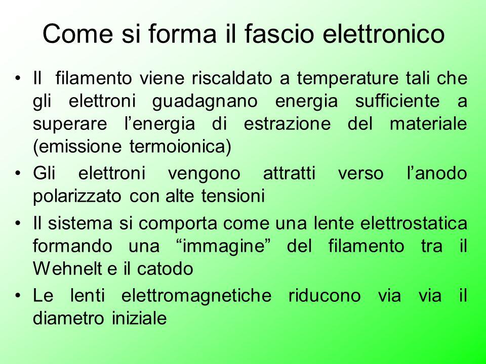 Come si forma il fascio elettronico Il filamento viene riscaldato a temperature tali che gli elettroni guadagnano energia sufficiente a superare lener
