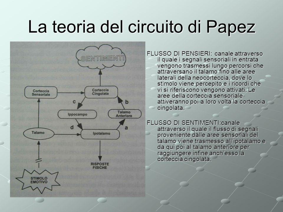 La teoria del circuito di Papez FLUSSO DI PENSIERI: canale attraverso il quale i segnali sensoriali in entrata vengono trasmessi lungo percorsi che at