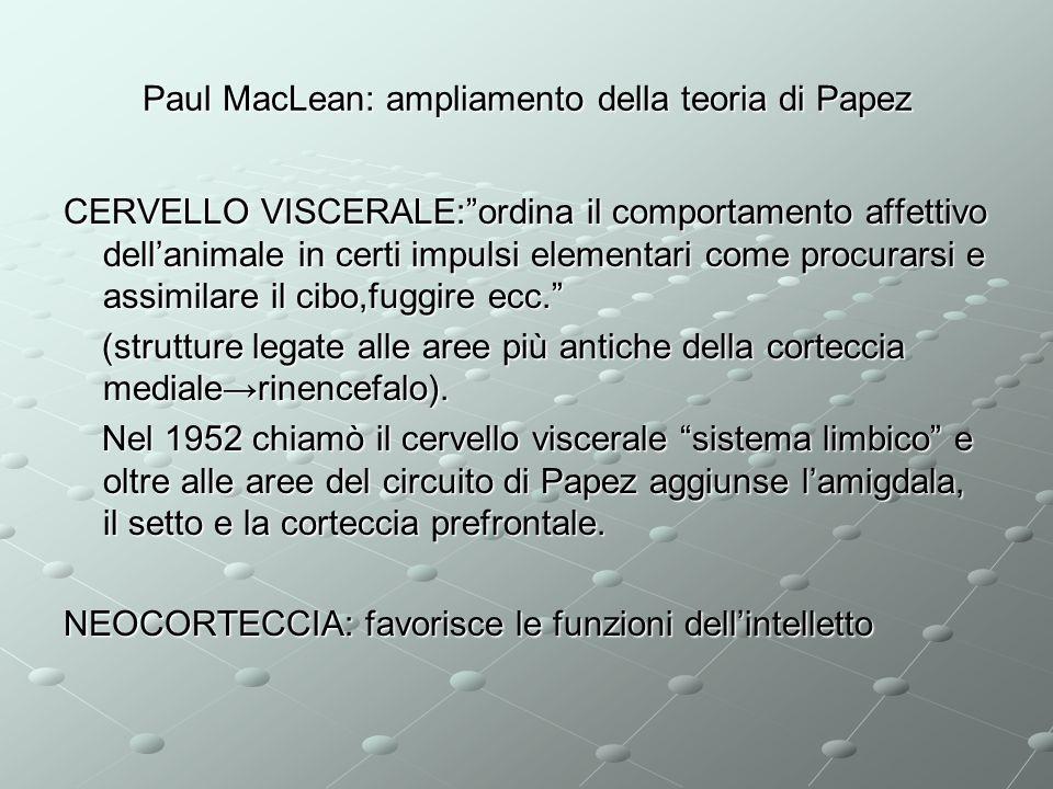 Paul MacLean: ampliamento della teoria di Papez CERVELLO VISCERALE:ordina il comportamento affettivo dellanimale in certi impulsi elementari come proc