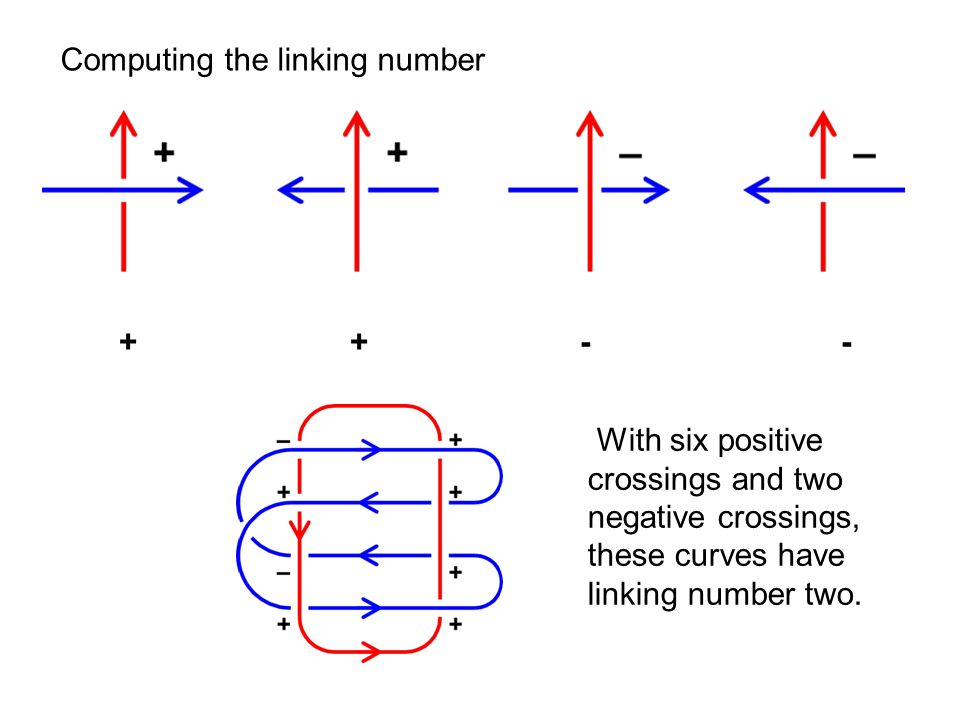 + + - - With six positive crossings and two negative crossings, these curves have linking number two.