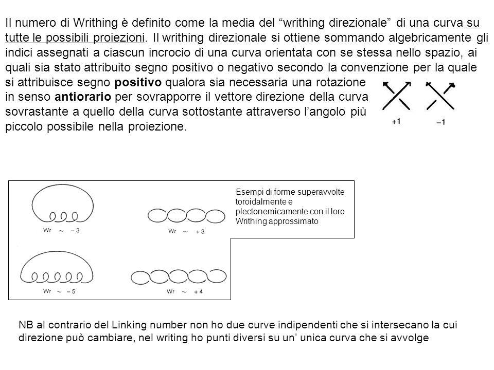 Il numero di Writhing è definito come la media del writhing direzionale di una curva su tutte le possibili proiezioni.