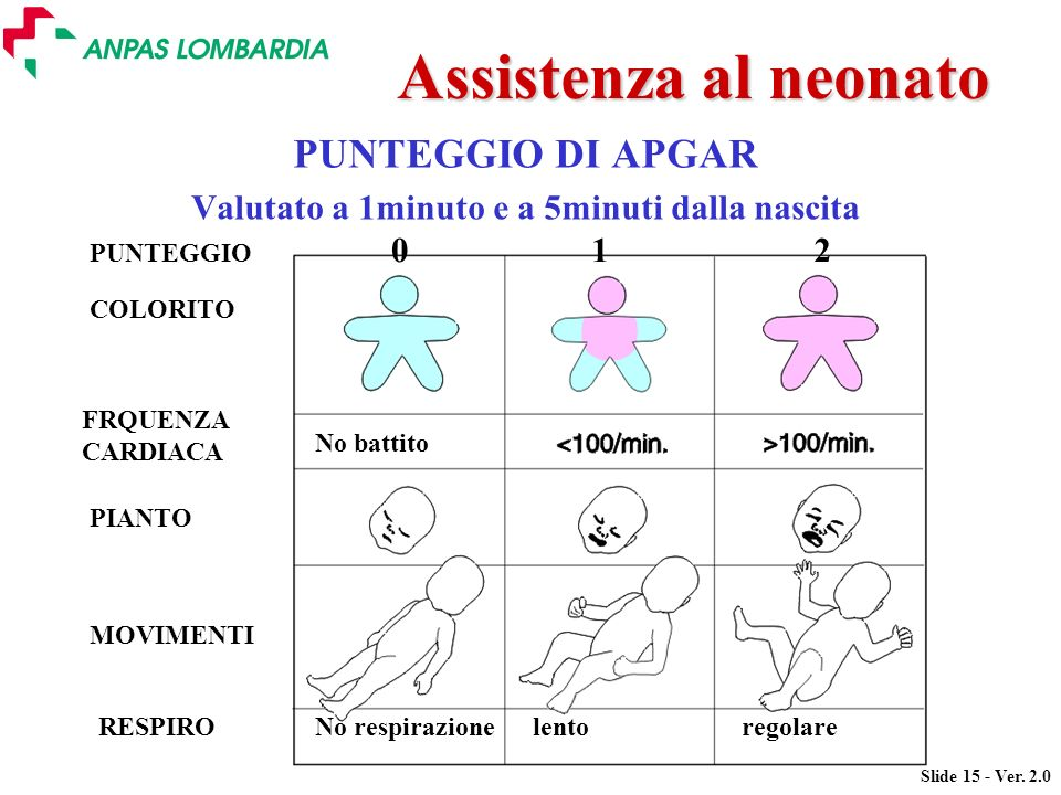 Slide 15 - Ver. 2.0 Assistenza al neonato PUNTEGGIO DI APGAR Valutato a 1minuto e a 5minuti dalla nascita No battito COLORITO FRQUENZA CARDIACA PIANTO