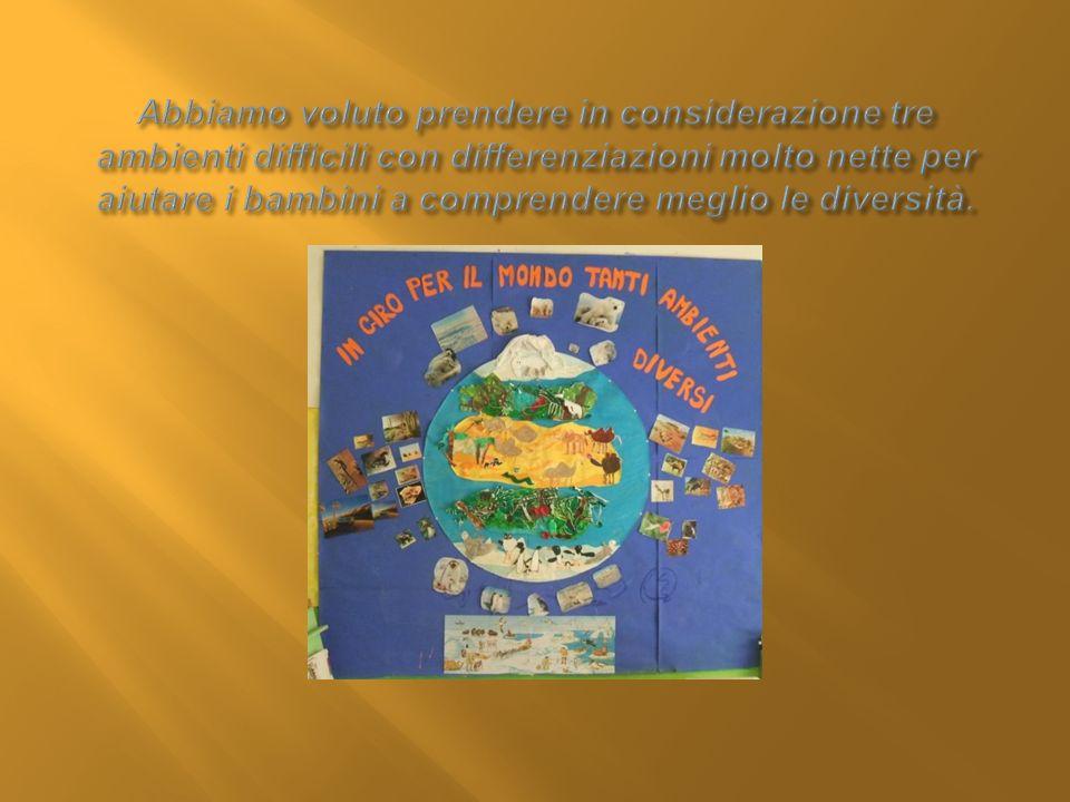SCIMMIE COLIBRÌ