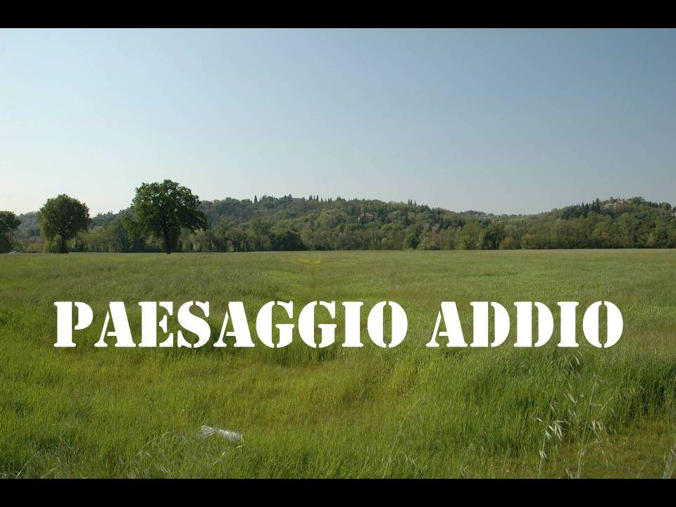 PAESAGGIO ADDIO