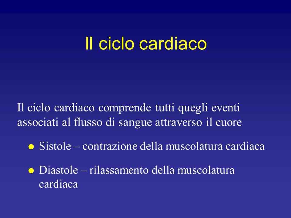 Pressione (mm Hg) Ciclo cardiaco e toni cardiaci (lub-dup) Chiusura valvola aortica Chiusura valvole AV 1° tono cardiaco: si ha alla chiusura delle va