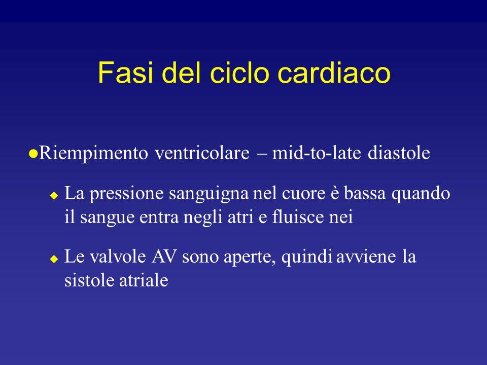 Il ciclo cardiaco comprende tutti quegli eventi associati al flusso di sangue attraverso il cuore Sistole – contrazione della muscolatura cardiaca Dia