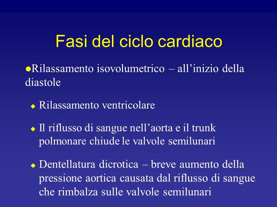Sistole ventricolare Gli atri si rilassano Laumento di pressione nei ventricoli comporta la chiusura delle valvole AV Fase di contrazione isovolumetri