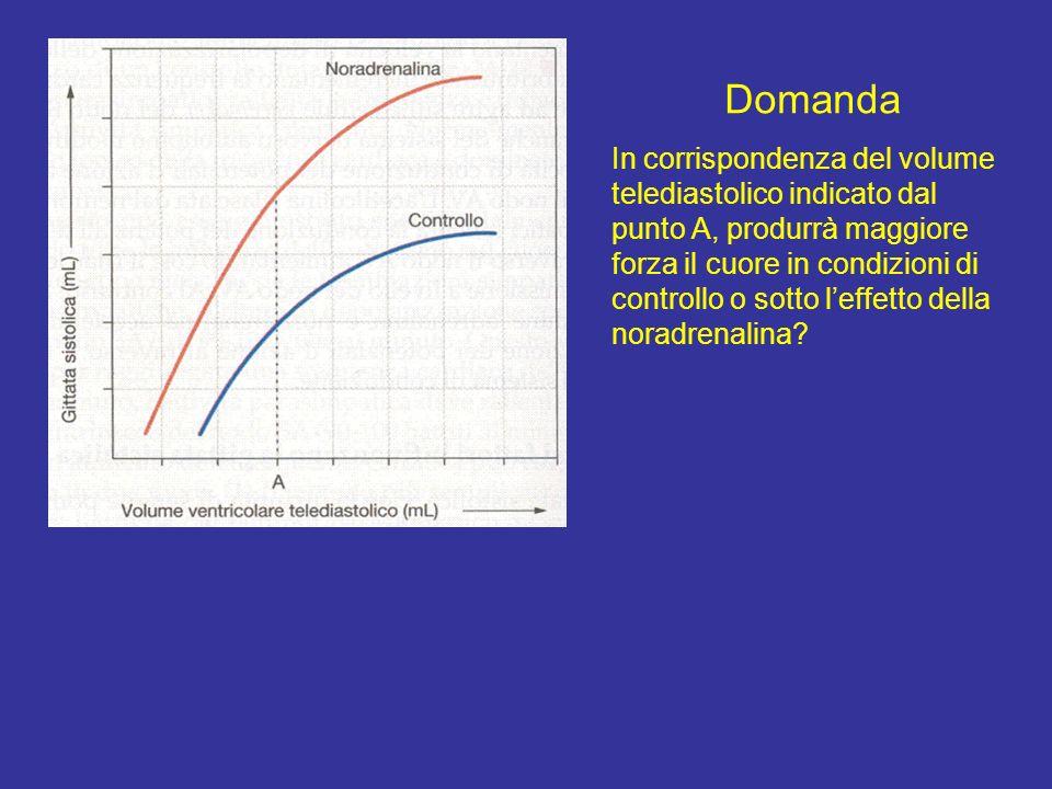 Domande 1.Qual è la gittata sistolica massima? 2.Qual è il volume telediastolico che permette di ottenere la gittata sistolica massima? La massima git