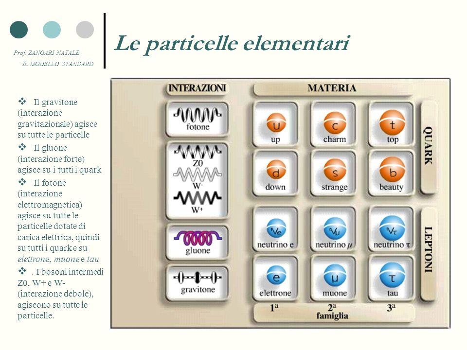 Prof. ZANGARI NATALE IL MODELLO STANDARD Lintensità delle forze fondamentali L'intensità relativa delle quattro forze fondamentali della natura può es