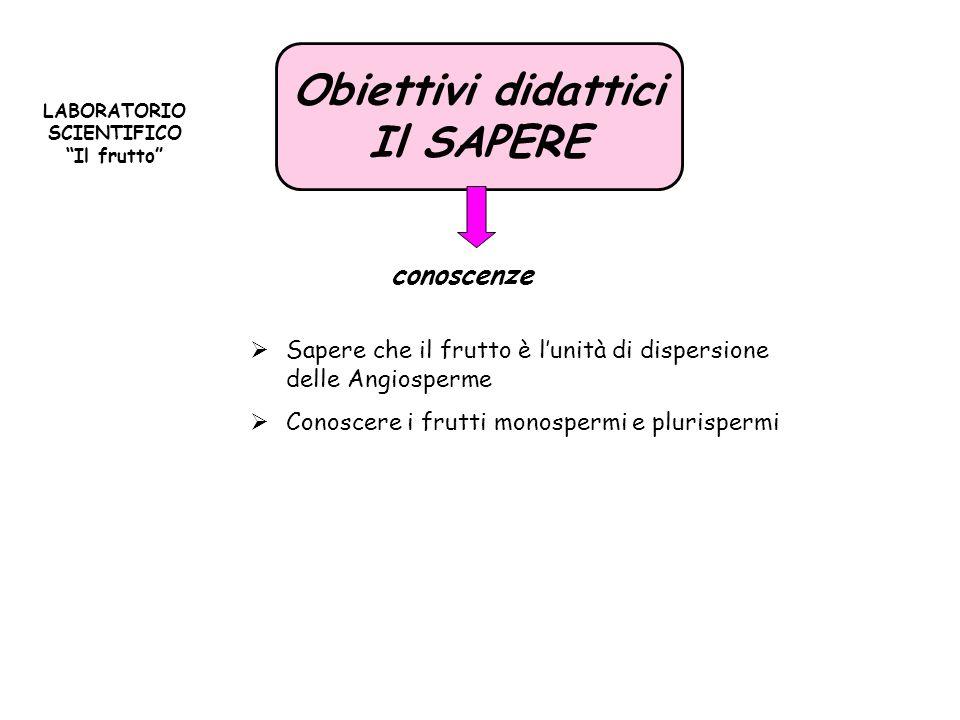 Categoria Frutti MONOSPERMIPLURISPERMI CLASSIFICAZIONE FRUTTI MONOSPERMI E PLURISPERMI