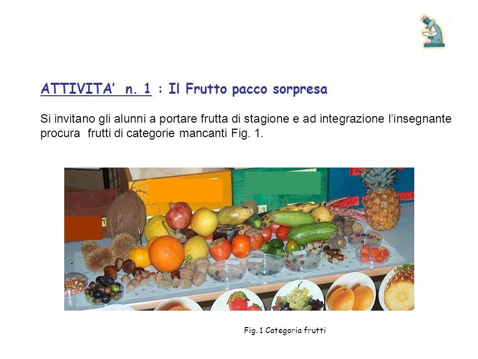 ATTIVITA n. 1 : Il Frutto pacco sorpresa Si invitano gli alunni a portare frutta di stagione e ad integrazione linsegnante procura frutti di categorie